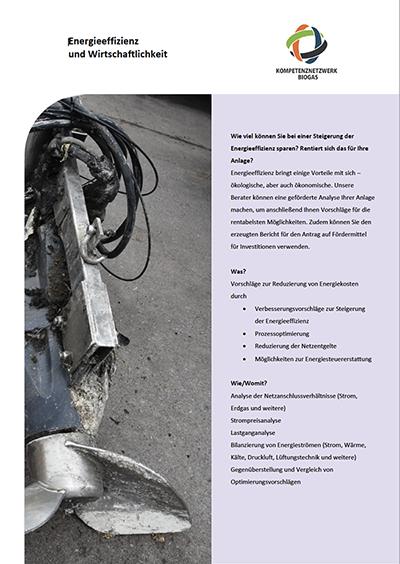 Factsheet Energieeffizienz